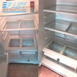 Fridge Cleaning Results Before and After