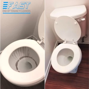 Toilet Cleaning Before and After