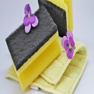 Sponges and Towel